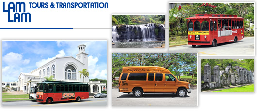 T.P. Micronesia, Inc. D.B.A. Lam Lam Tours & Transportation, Inc.